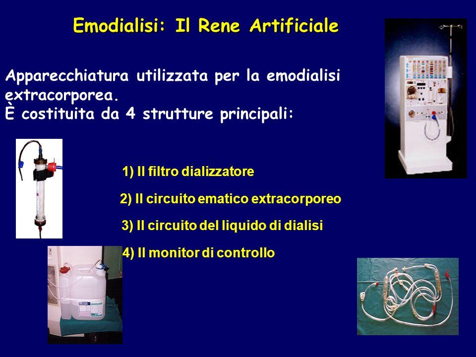 Emodialisi: Il Rene Artificiale Apparecchiatura utilizzata per la emodialisi extracorporea.