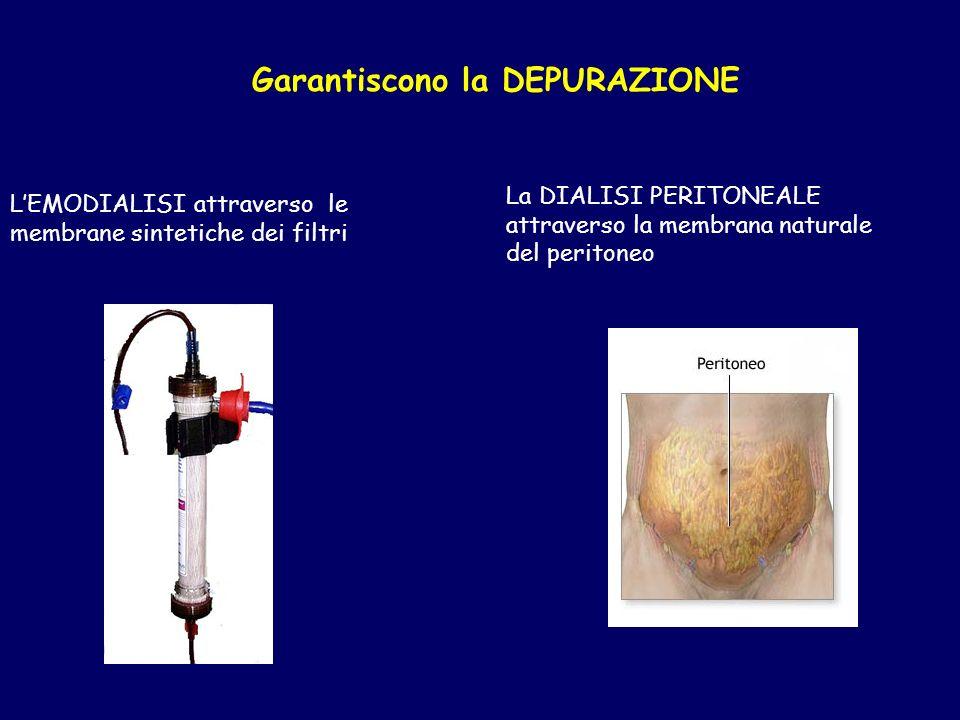 Garantiscono la DEPURAZIONE LEMODIALISI attraverso le membrane sintetiche dei filtri La DIALISI PERITONEALE attraverso la membrana naturale del peritoneo