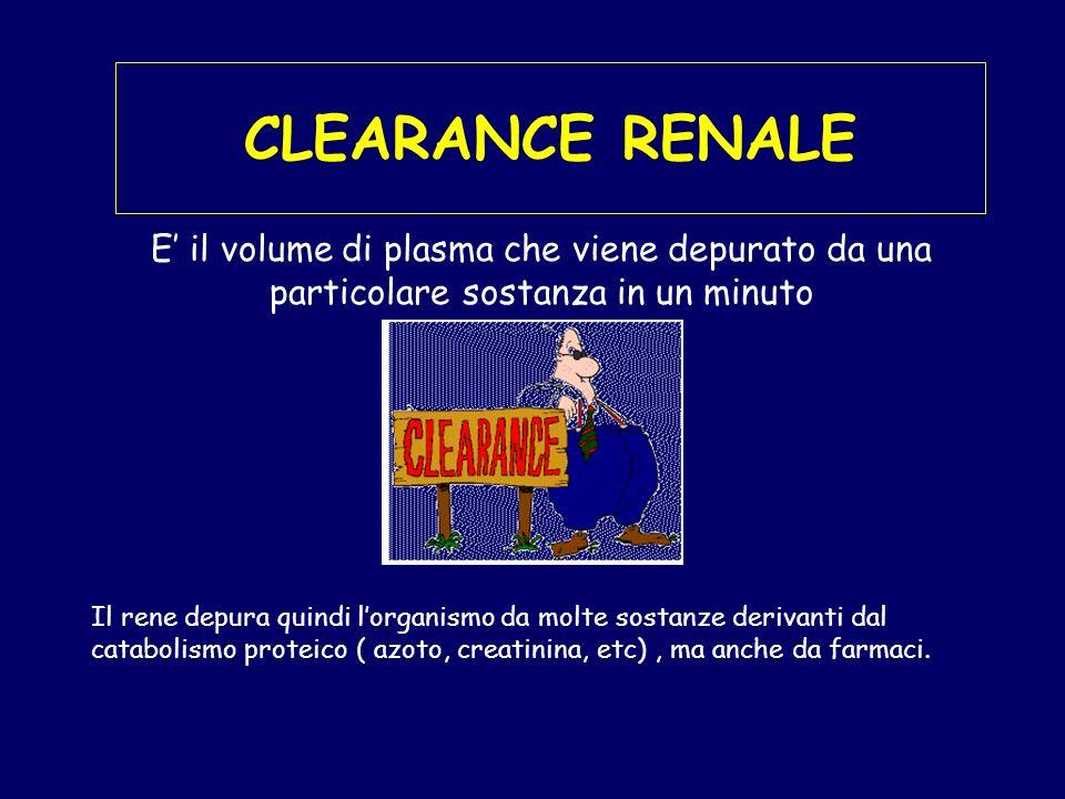 CLEARANCE RENALE E il volume di plasma che viene depurato da una particolare sostanza in un minuto Il rene depura quindi lorganismo da molte sostanze derivanti dal catabolismo proteico ( azoto, creatinina, etc), ma anche da farmaci.