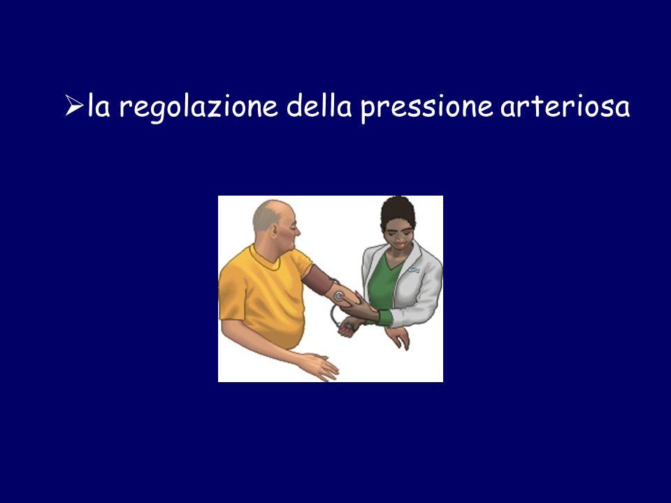 la regolazione della pressione arteriosa