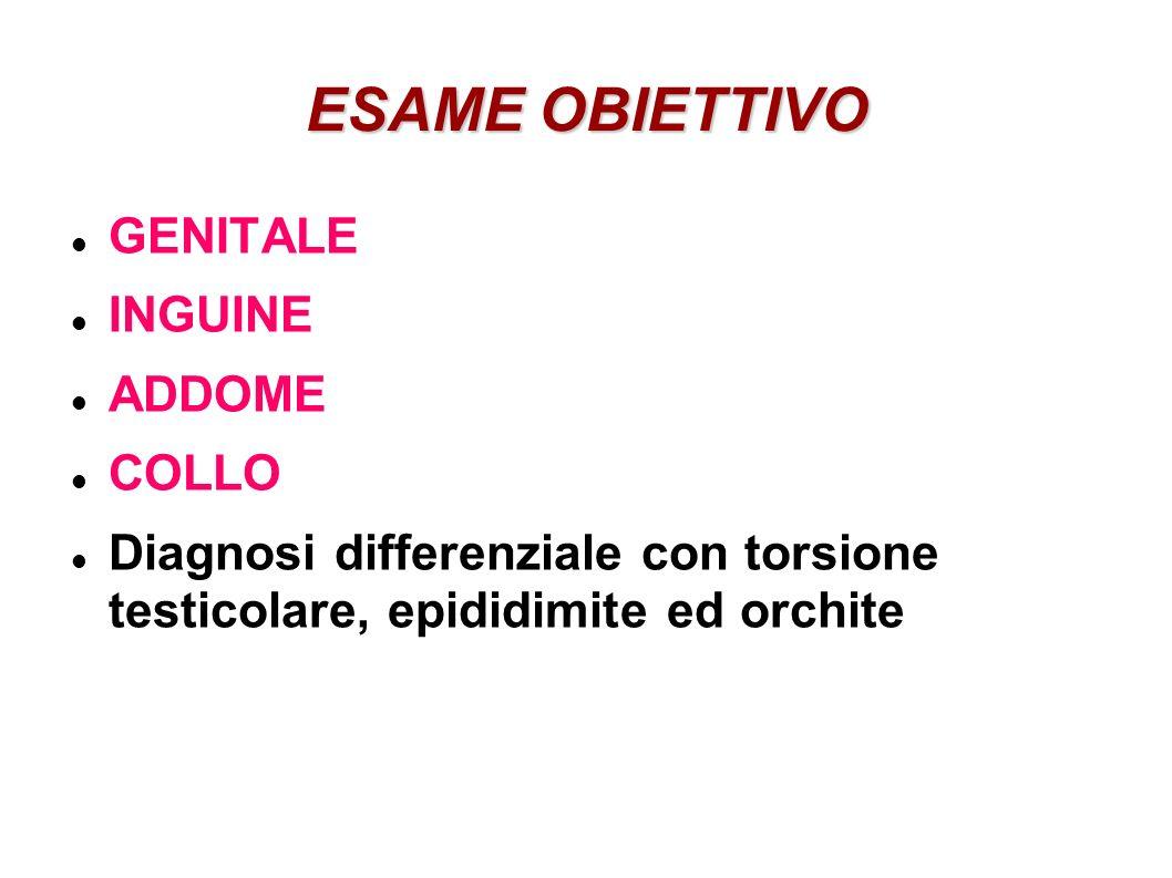 ESAME OBIETTIVO GENITALE INGUINE ADDOME COLLO Diagnosi differenziale con torsione testicolare, epididimite ed orchite