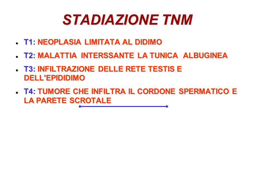 STADIAZIONE TNM T1: NEOPLASIA LIMITATA AL DIDIMO T1: NEOPLASIA LIMITATA AL DIDIMO T2: MALATTIA INTERSSANTE LA TUNICA ALBUGINEA T2: MALATTIA INTERSSANT