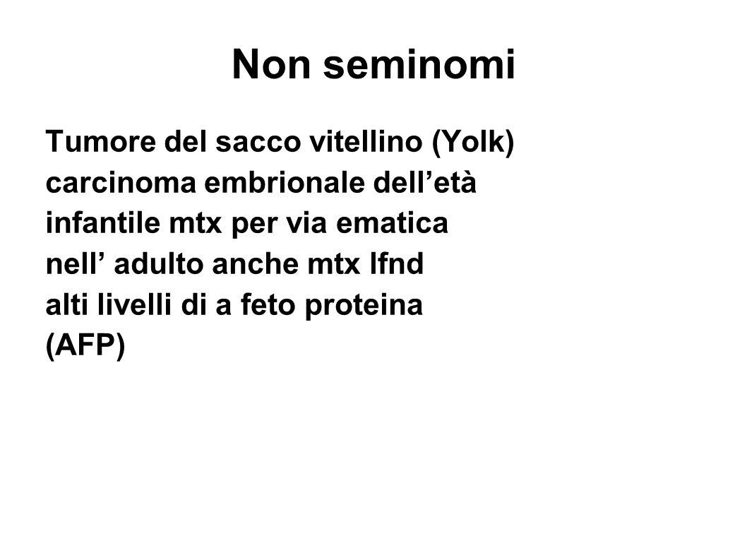 Non seminomi Tumore del sacco vitellino (Yolk) carcinoma embrionale delletà infantile mtx per via ematica nell adulto anche mtx lfnd alti livelli di a