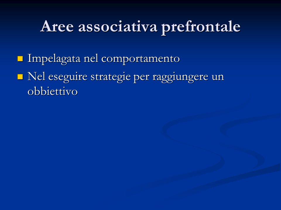Impelagata nel comportamento Impelagata nel comportamento Nel eseguire strategie per raggiungere un obbiettivo Nel eseguire strategie per raggiungere un obbiettivo Aree associativa prefrontale
