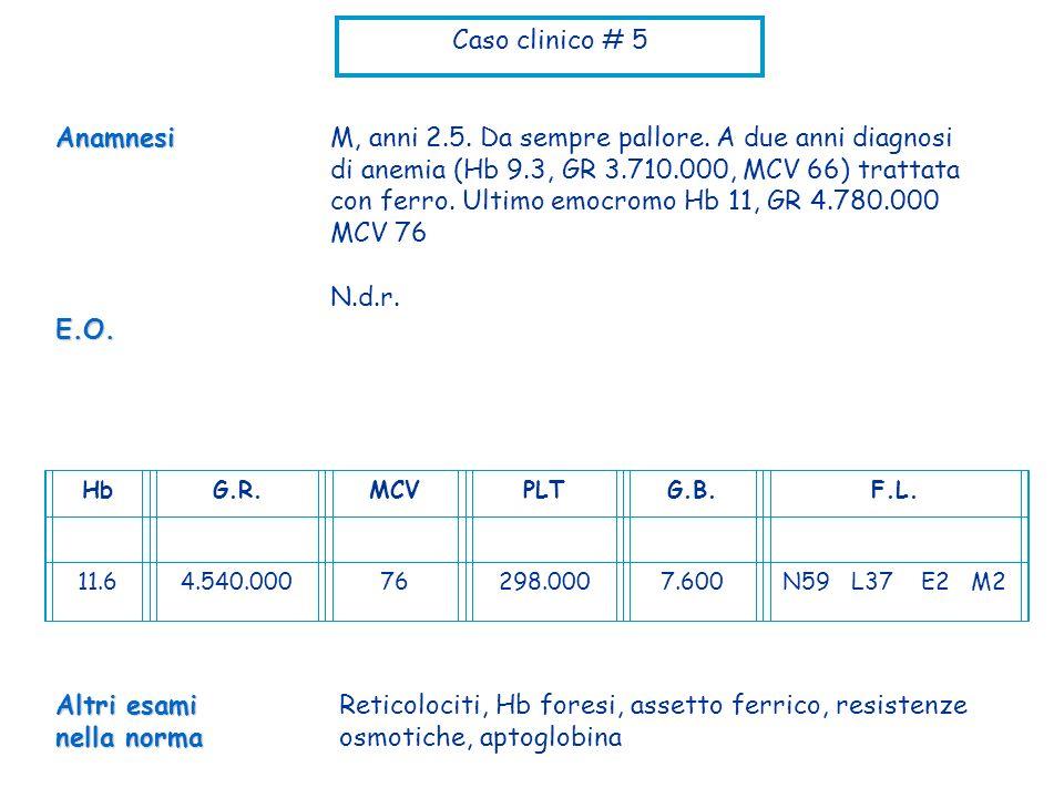 Caso clinico # 5 M, anni 2.5. Da sempre pallore. A due anni diagnosi di anemia (Hb 9.3, GR 3.710.000, MCV 66) trattata con ferro. Ultimo emocromo Hb 1