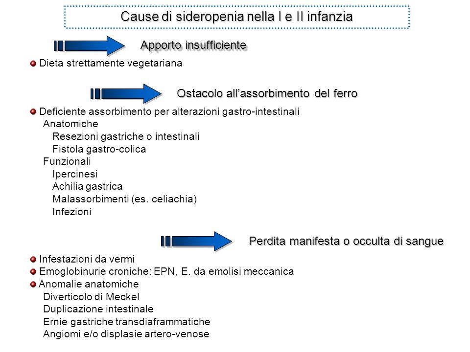 Dieta strettamente vegetariana Ostacolo allassorbimento del ferro Infestazioni da vermi Emoglobinurie croniche: EPN, E. da emolisi meccanica Anomalie
