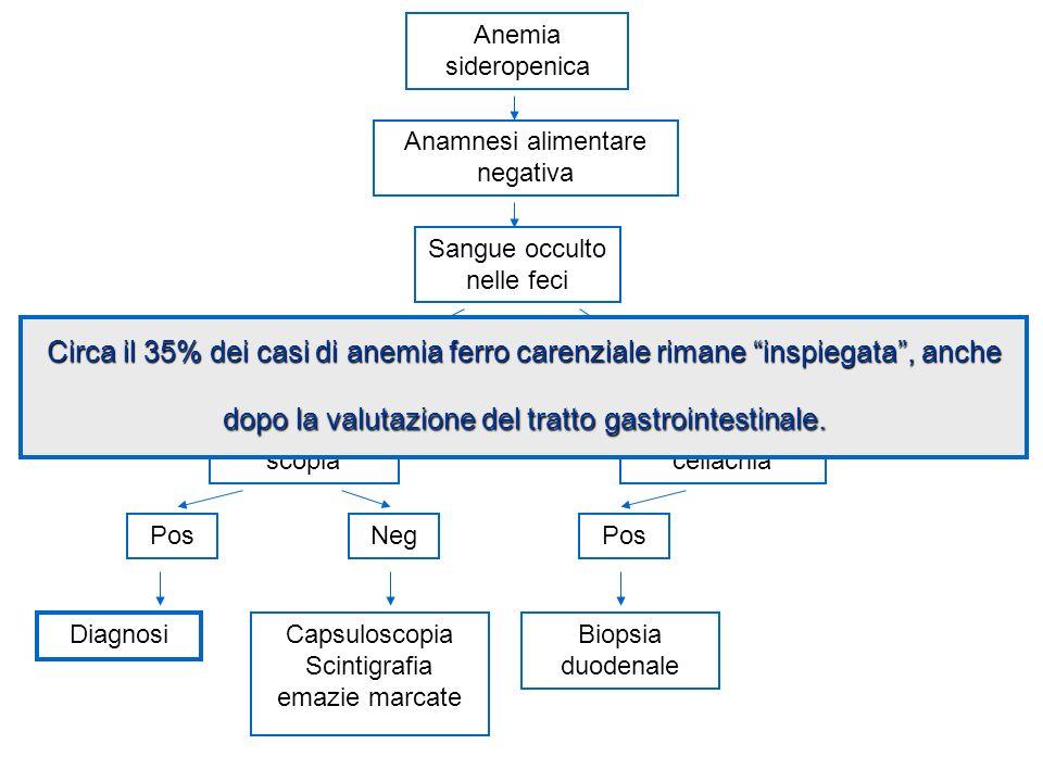 Anemia sideropenica Anamnesi alimentare negativa Screening celiachia Diagnosi Sangue occulto nelle feci Capsuloscopia Scintigrafia emazie marcate SiNo Biopsia duodenale EGD- e/o RC scopia NegPos Circa il 35% dei casi di anemia ferro carenziale rimane inspiegata, anche dopo la valutazione del tratto gastrointestinale.