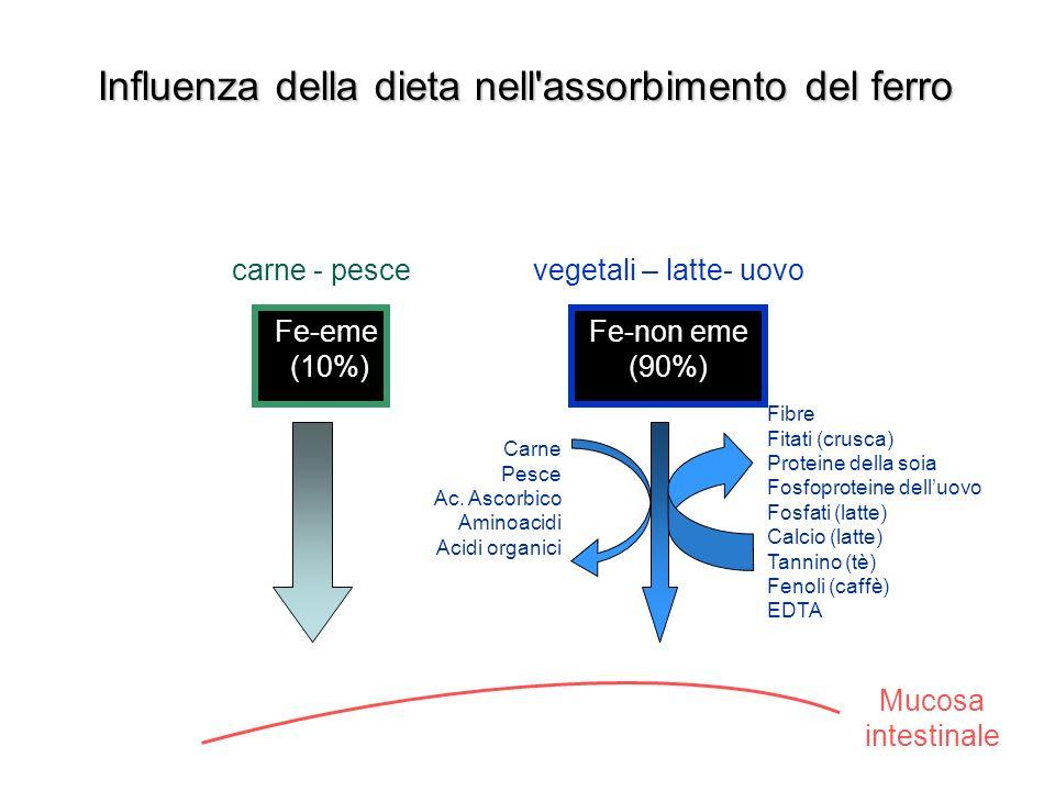 Mucosa intestinale Carne Pesce Ac.