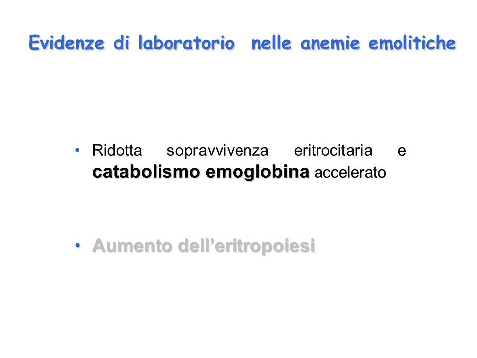 Evidenze di laboratorio nelle anemie emolitiche catabolismo emoglobinaRidotta sopravvivenza eritrocitaria e catabolismo emoglobina accelerato Aumento delleritropoiesiAumento delleritropoiesi