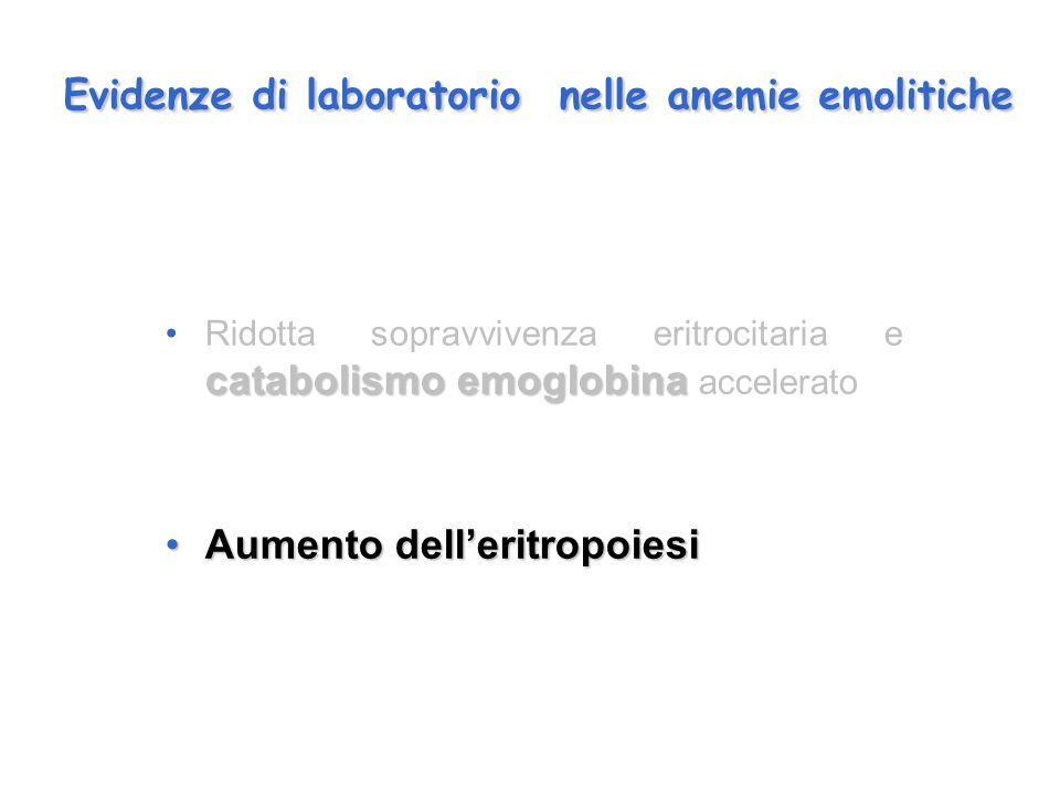 Evidenze di laboratorio nelle anemie emolitiche catabolismo emoglobinaRidotta sopravvivenza eritrocitaria e catabolismo emoglobina accelerato Aumento