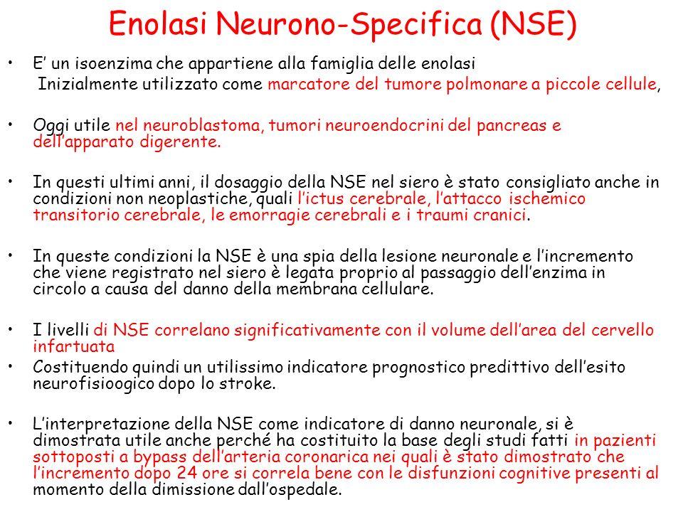 Enolasi Neurono-Specifica (NSE) E un isoenzima che appartiene alla famiglia delle enolasi Inizialmente utilizzato come marcatore del tumore polmonare a piccole cellule, Oggi utile nel neuroblastoma, tumori neuroendocrini del pancreas e dellapparato digerente.