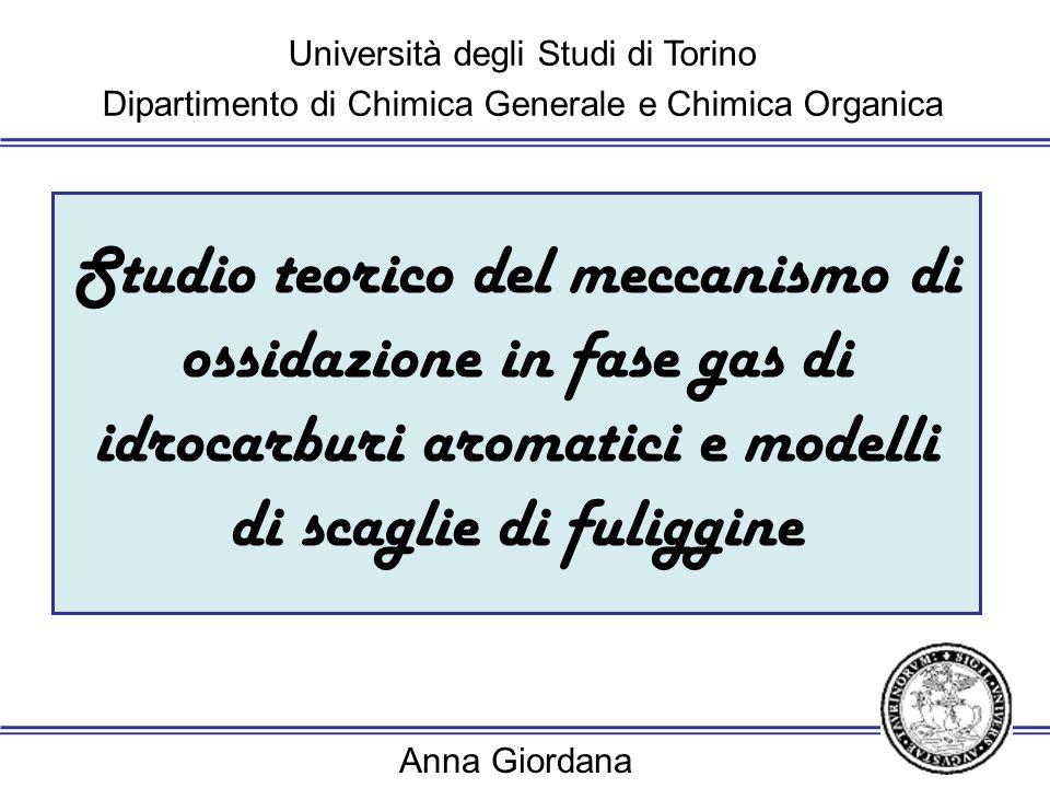 Università degli Studi di Torino Dipartimento di Chimica Generale e Chimica Organica Anna Giordana introduzione