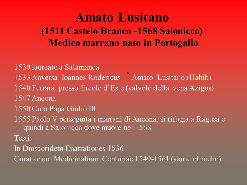 Amato Lusitano (1511 Castelo Branco -1568 Salonicco) Medico marrano nato in Portogallo 1530 laureato a Salamanca 1533 Anversa Ioannes Rodericus Amato