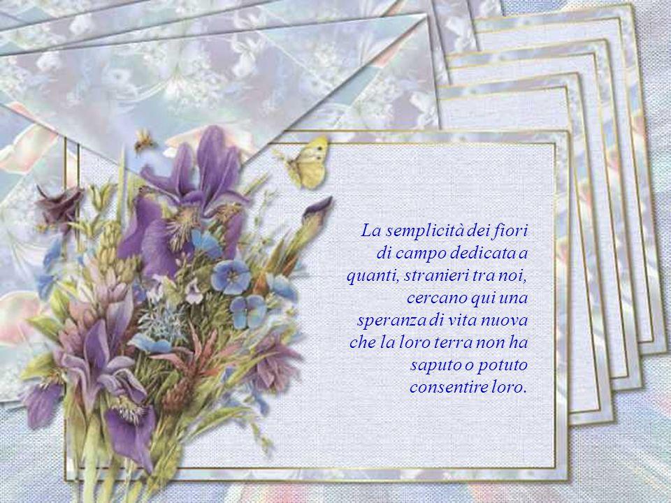Fiori pieni di gioia per gli emarginati, i diversi, gli sfortunati e per i più poveri tra noi, perché non provino la tristezza dellindifferenza e dell