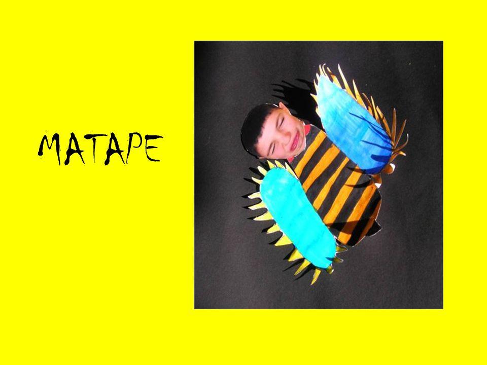 MATAPE