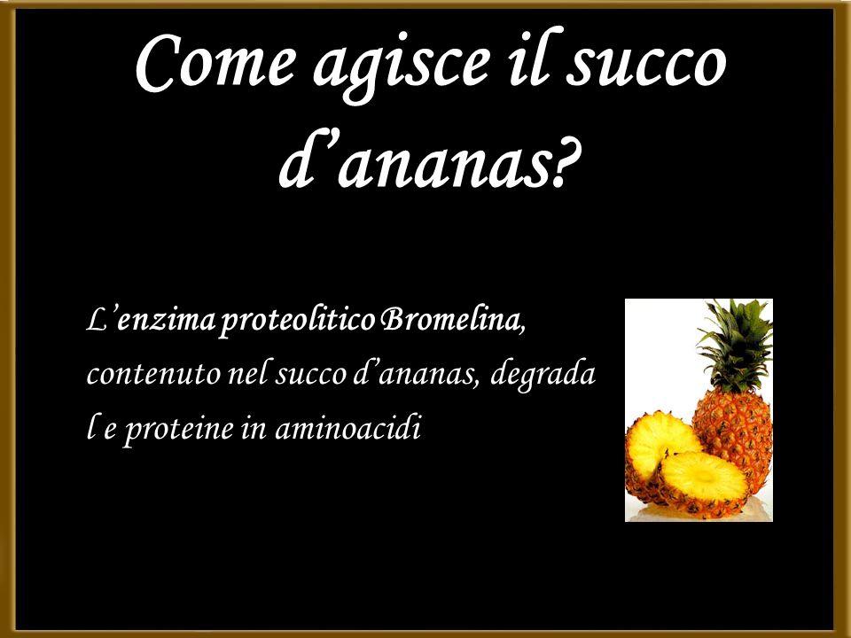 Come agisce il succo dananas? Lenzima proteolitico Bromelina, contenuto nel succo dananas, degrada l e proteine in aminoacidi