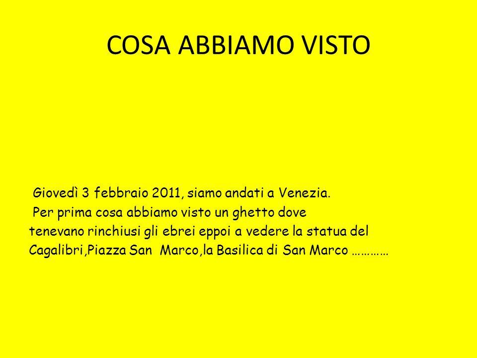 COSA ABBIAMO VISTO Giovedì 3 febbraio 2011, siamo andati a Venezia.