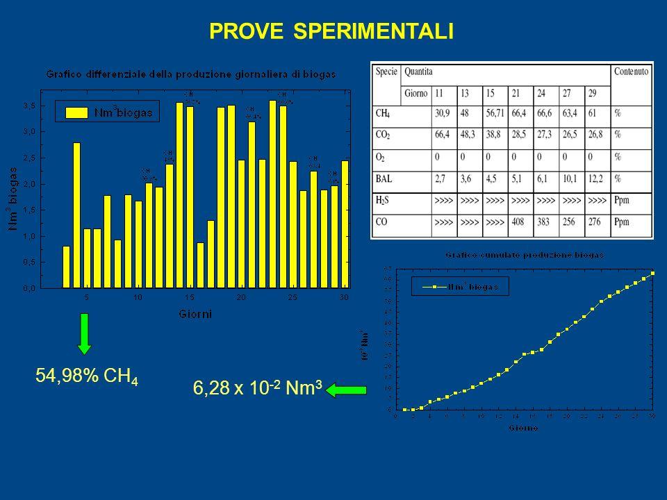 PROVE SPERIMENTALI 54,98% CH 4 6,28 x 10 -2 Nm 3