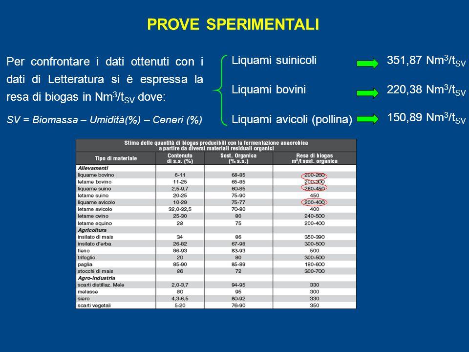 PROVE SPERIMENTALI Per confrontare i dati ottenuti con i dati di Letteratura si è espressa la resa di biogas in Nm 3 /t SV dove: SV = Biomassa – Umidità(%) – Ceneri (%) Liquami suinicoli Liquami bovini Liquami avicoli (pollina) 351,87 Nm 3 /t SV 220,38 Nm 3 /t SV 150,89 Nm 3 /t SV