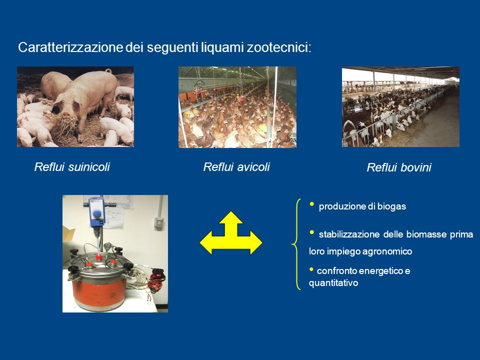 Caratterizzazione dei seguenti liquami zootecnici: Reflui suinicoliReflui avicoli Reflui bovini stabilizzazione delle biomasse prima loro impiego agronomico produzione di biogas confronto energetico e quantitativo