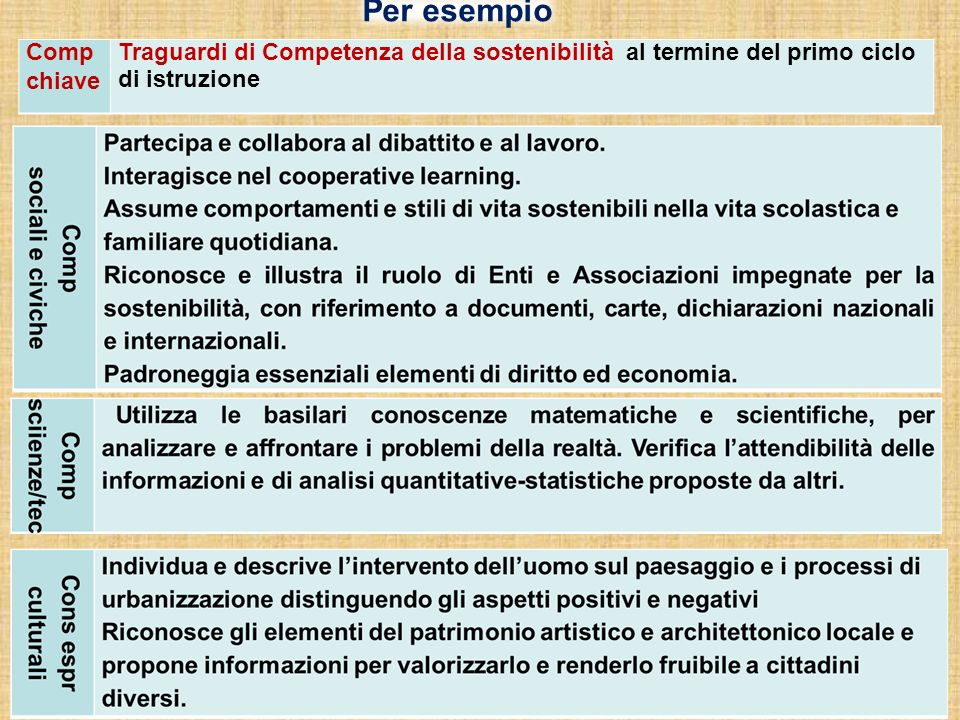 Per esempio Comp chiave Traguardi di Competenza della sostenibilità al termine del primo ciclo di istruzione
