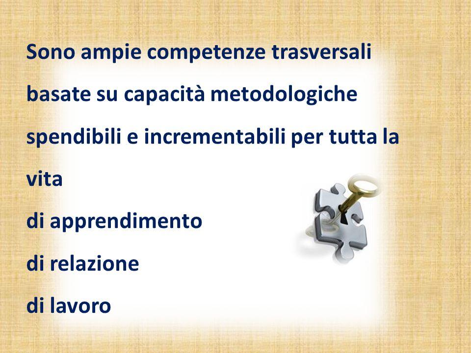Sono ampie competenze trasversali basate su capacità metodologiche spendibili e incrementabili per tutta la vita di apprendimento di relazione di lavoro