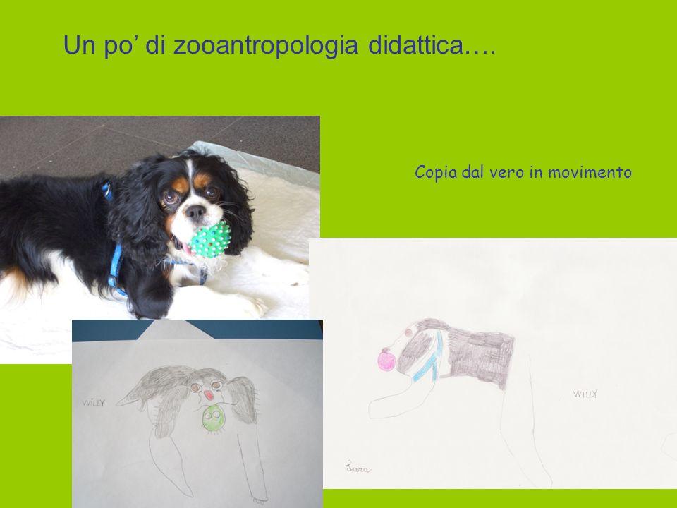 Un po di zooantropologia didattica…. Copia dal vero in movimento