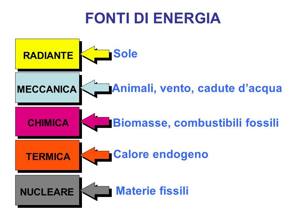 FONTI DI ENERGIA MECCANICA TERMICA RADIANTE CHIMICA NUCLEARE Sole Animali, vento, cadute dacqua Biomasse, combustibili fossili Calore endogeno Materie fissili