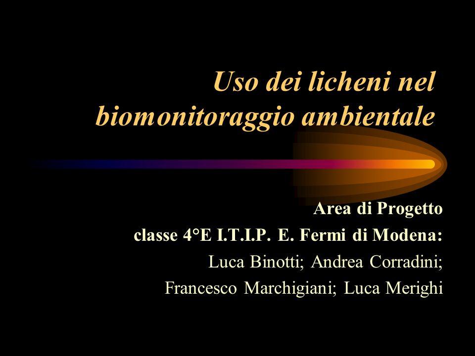 Uso dei licheni nel biomonitoraggio ambientale Area di Progetto classe 4°E I.T.I.P. E. Fermi di Modena: Luca Binotti; Andrea Corradini; Francesco Marc