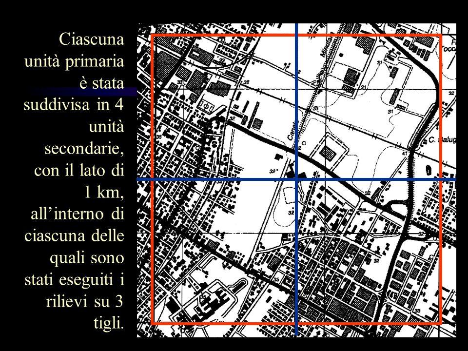 Ciascuna unità primaria è stata suddivisa in 4 unità secondarie, con il lato di 1 km, allinterno di ciascuna delle quali sono stati eseguiti i rilievi