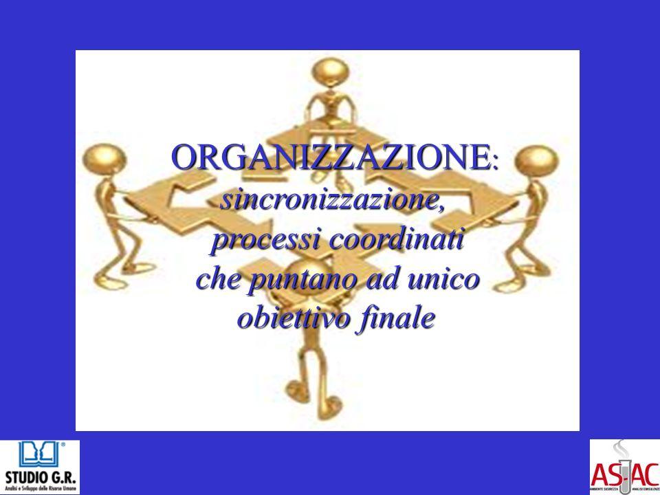 ORGANIZZAZIONE : ORGANIZZAZIONE : sincronizzazione, sincronizzazione, processi coordinati processi coordinati che puntano ad unico che puntano ad unico obiettivo finale obiettivo finale