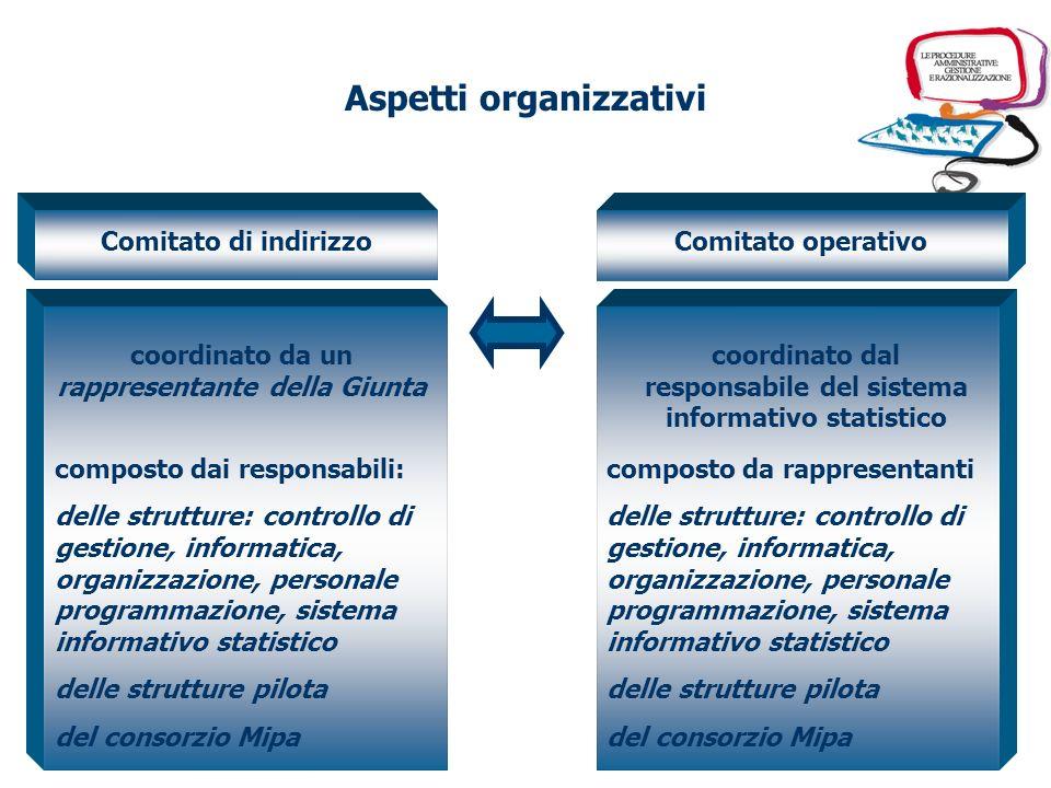 Comitato di indirizzo al fine di definire le strategie dazione il monitoraggio del percorso progettuale compresa la rimozione degli eventuali ostacoli Comitato operativo al fine di coordinare le fasi operative del progetto le rilevazioni effettuate sulle strutture pilota dai rilevatori statistici Aspetti organizzativi
