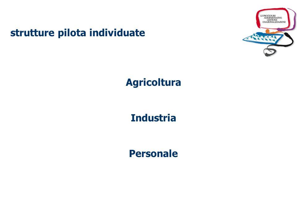 Svolgimento della sperimentazione individuazione delle strutture pilota preselezione delle procedure da razionalizzare selezione e attivazione di inte
