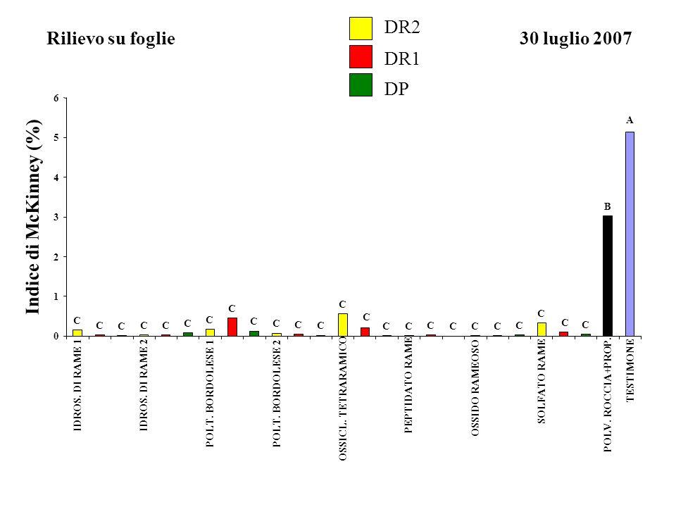 Rilievo su foglie DR2 DR1 DP 30 luglio 2007 Indice di McKinney (%)
