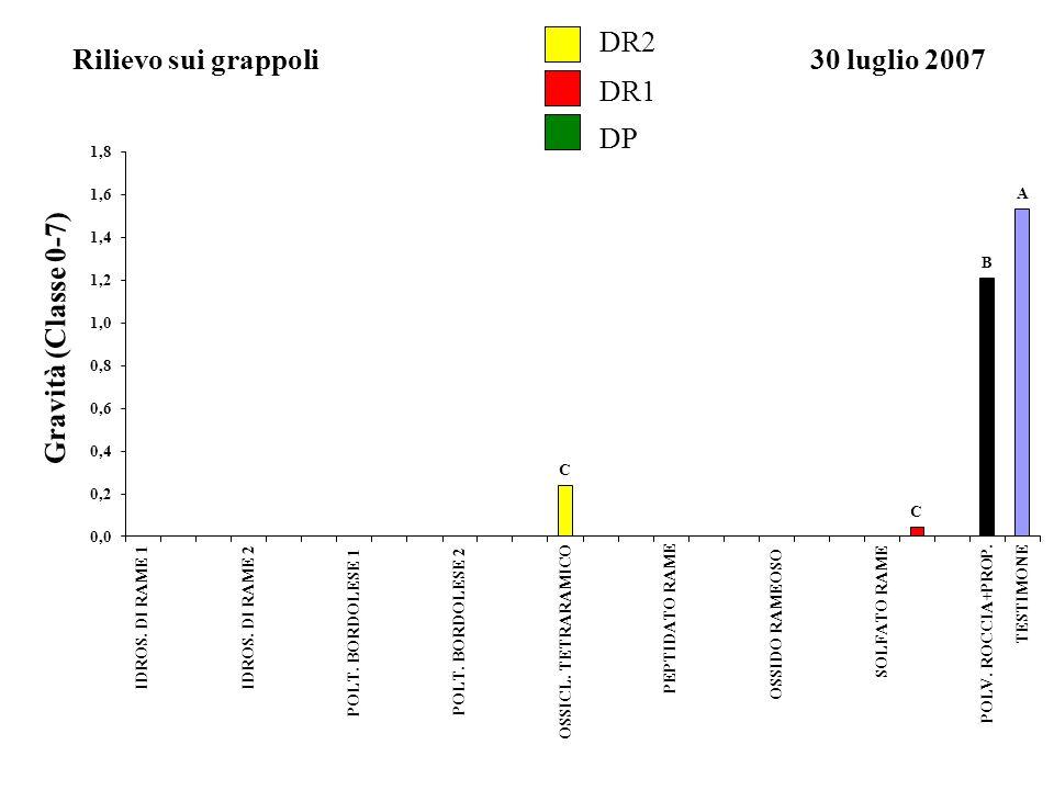 DP Gravità (Classe 0-7) DR2 DR1 Rilievo sui grappoli30 luglio 2007 A B C C 0,0 0,2 0,4 0,6 0,8 1,0 1,2 1,4 1,6 1,8 IDROS. DI RAME 1IDROS. DI RAME 2 PO
