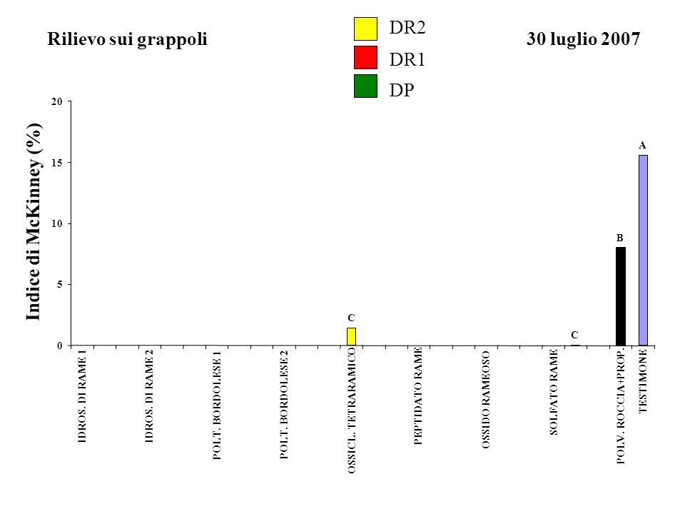 DR2 DR1 DP Rilievo sui grappoli30 luglio 2007 Indice di McKinney (%) A B C C 0 5 10 15 20 IDROS. DI RAME 1IDROS. DI RAME 2 POLT. BORDOLESE 1 POLT. BOR