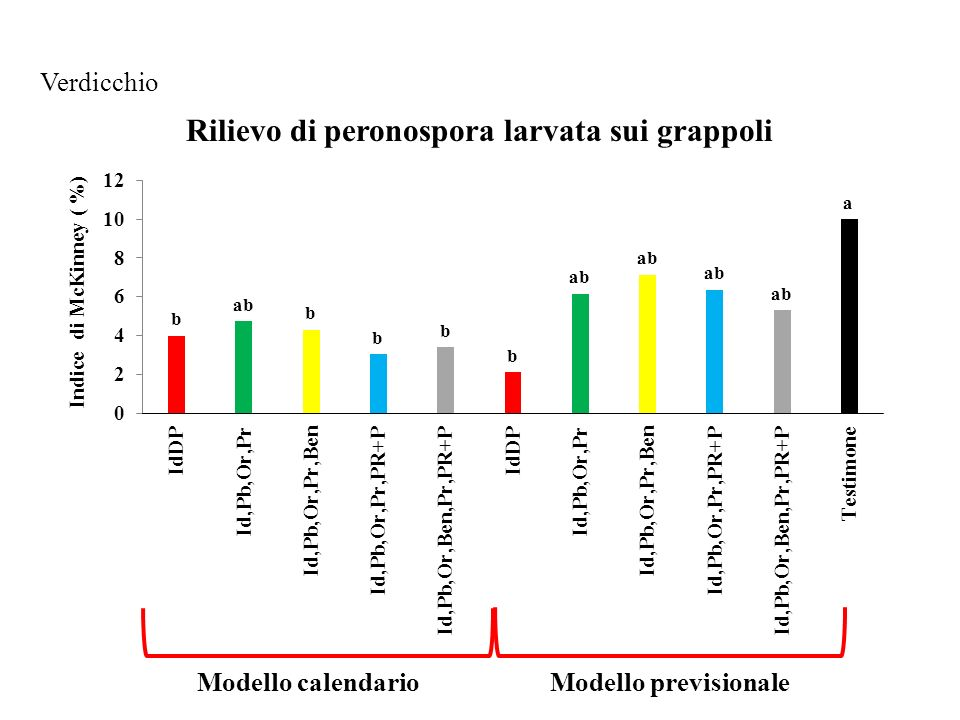 Verdicchio Rilievo di peronospora larvata sui grappoli Modello calendario