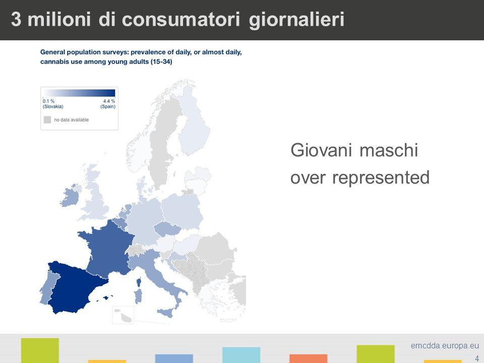 4 emcdda.europa.eu 3 milioni di consumatori giornalieri Giovani maschi over represented