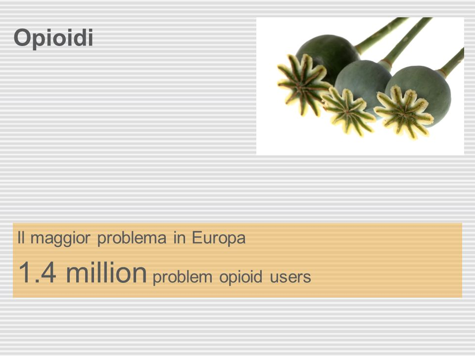 Opioidi Il maggior problema in Europa 1.4 million problem opioid users