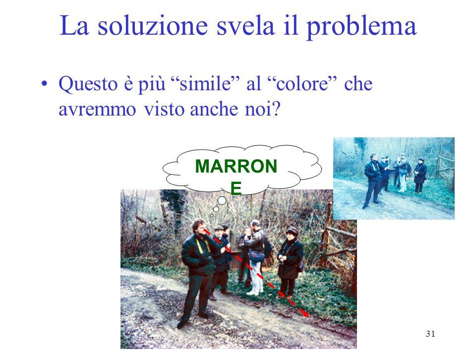 31 La soluzione svela il problema Questo è più simile al colore che avremmo visto anche noi? MARRON E
