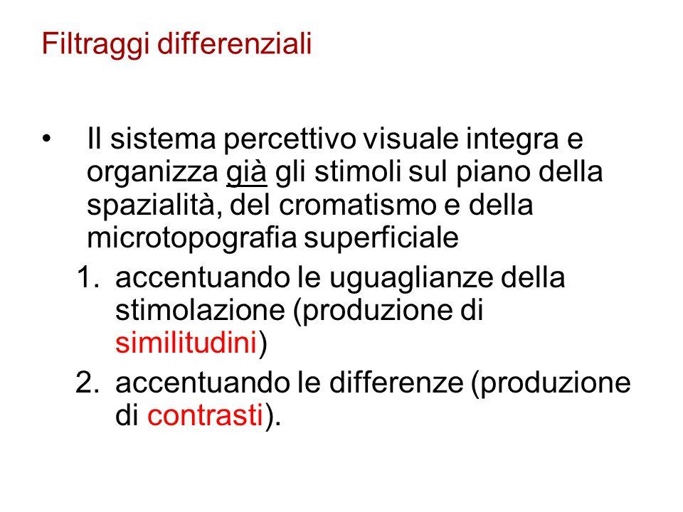 Filtraggi differenziali Il sistema percettivo visuale integra e organizza già gli stimoli sul piano della spazialità, del cromatismo e della microtopo
