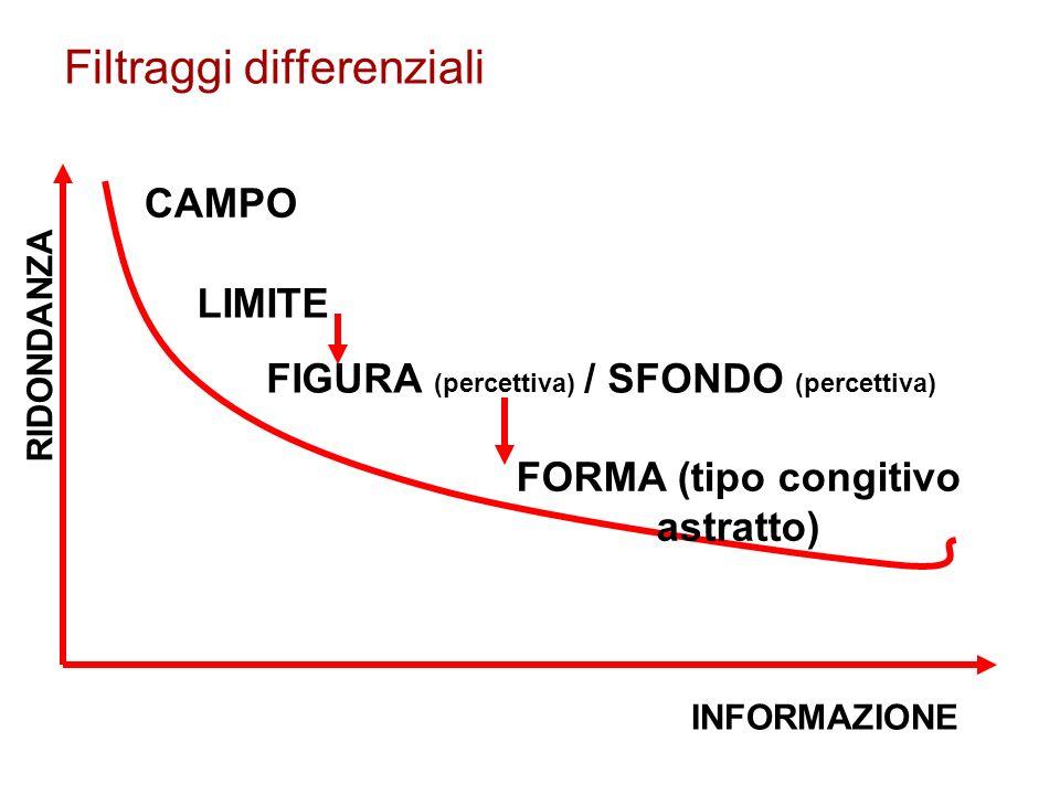 Filtraggi differenziali INFORMAZIONE RIDONDANZA CAMPO LIMITE FIGURA (percettiva) / SFONDO (percettiva) FORMA (tipo congitivo astratto)