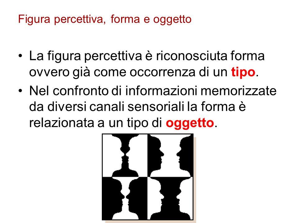 Figura percettiva, forma e oggetto La figura percettiva è riconosciuta forma ovvero già come occorrenza di un tipo. Nel confronto di informazioni memo