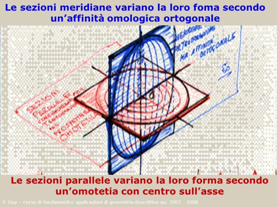 F. Gay – corso di fondamenti e applicazioni di geometria descrittiva aa. 2007 - 2008 Le sezioni meridiane variano la loro foma secondo unaffinità omol