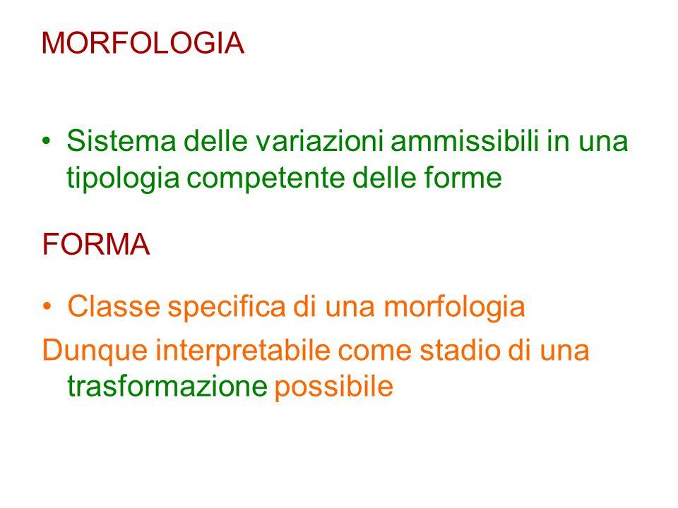 MORFOLOGIA Sistema delle variazioni ammissibili in una tipologia competente delle forme FORMA Classe specifica di una morfologia Dunque interpretabile