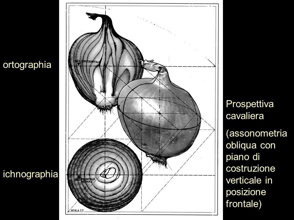 ichnographia ortographia Prospettiva cavaliera (assonometria obliqua con piano di costruzione verticale in posizione frontale)