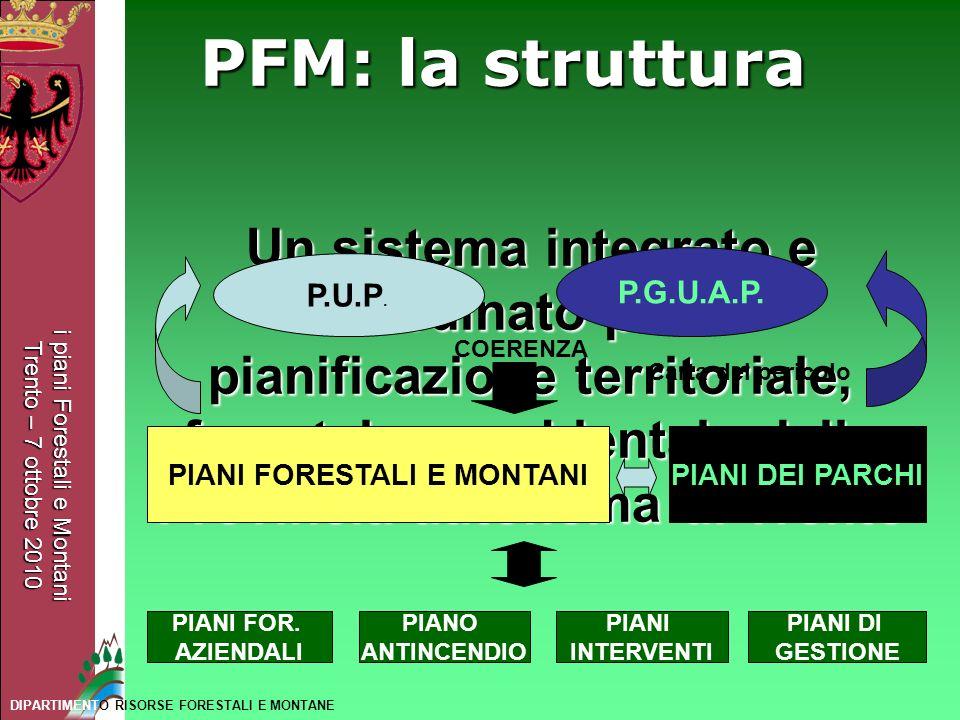 i piani Forestali e Montani Trento – 7 ottobre 2010 DIPARTIMENTO RISORSE FORESTALI E MONTANE PFM: la struttura Un sistema integrato e coordinato per l