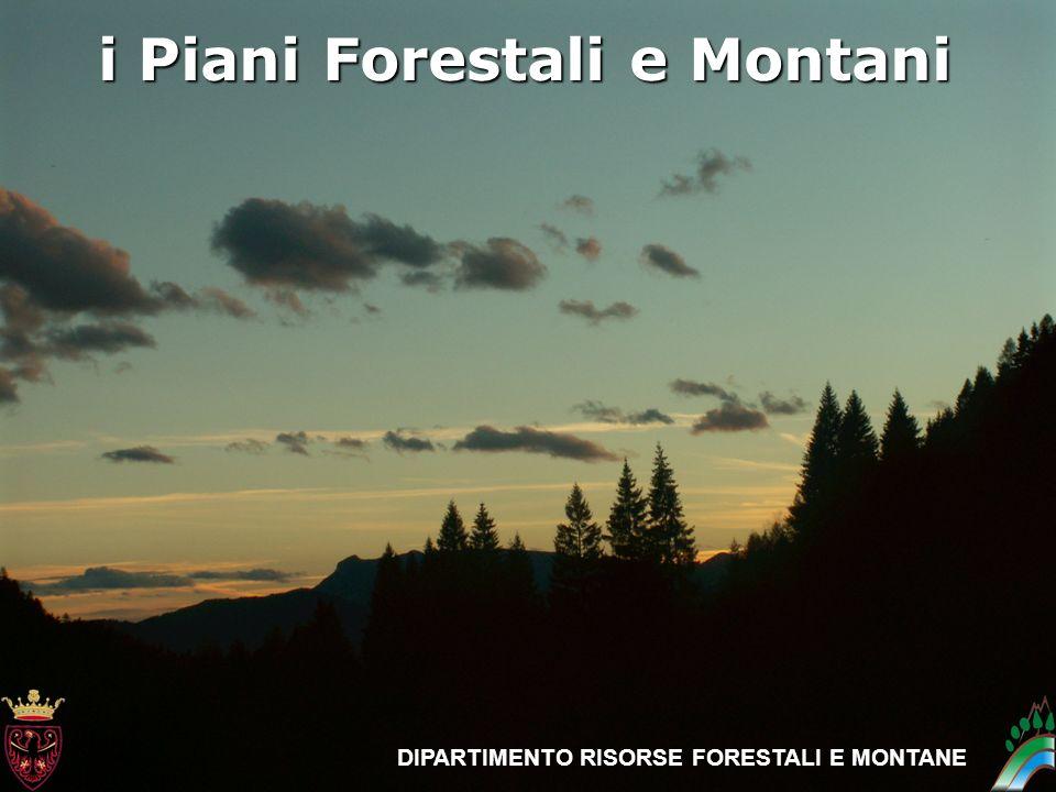 i piani Forestali e Montani Trento – 7 ottobre 2010 DIPARTIMENTO RISORSE FORESTALI E MONTANE i Piani Forestali e Montani DIPARTIMENTO RISORSE FORESTAL