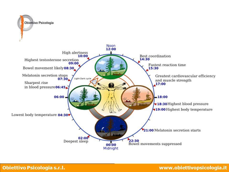 Obiettivo Psicologia s.r.l.www.obiettivopsicologia.it