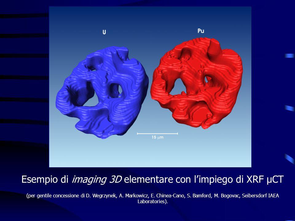 Esempio di imaging 3D elementare con limpiego di XRF μCT (per gentile concessione di D. Wegrzynek, A. Markowicz, E. Chinea-Cano, S. Bamford, M. Bogova
